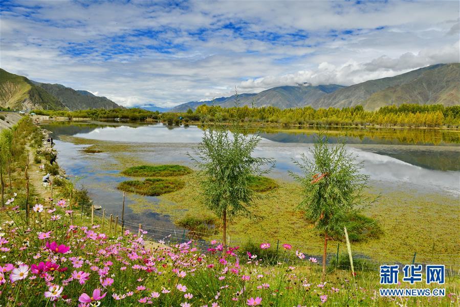 拉萨:金色池塘景色怡人