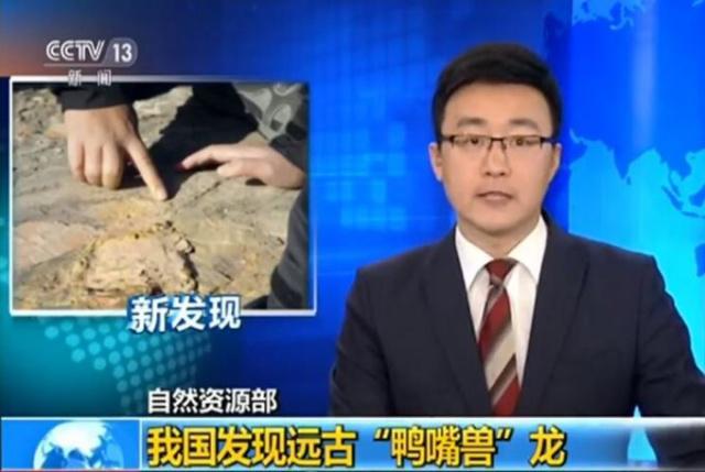 我国发现远古鸭嘴兽龙 头部与鸭嘴
