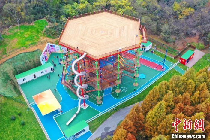 丰富市场供给 南京多板块业务再创新高