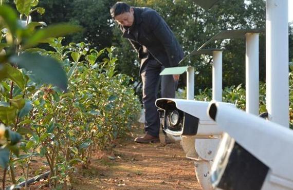 多领域广泛应用 农业高质量发展步履铿锵